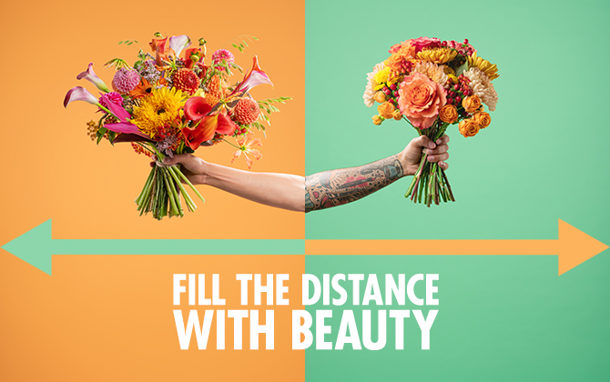 Fill The Distance: British Florist Association